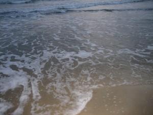 Sea shore, near Montpellier