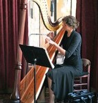 Pedal harp - 6 feet tall, elegant, Mahogany, rich sound, good for Pop music and Classical