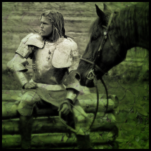 Knight with his horse