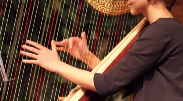 stephanie-claussen-playing-duke-on-the-harp