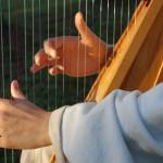 Harp hands